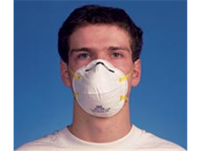 Disposable Dust Respirator